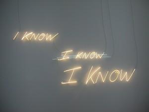 I Know, Godromil, Venezia Biennale d'art 2007.